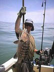 Sport Fishing for Snappers