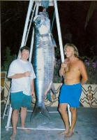 303lb Tarpon caught in the Gambia River, West Africa